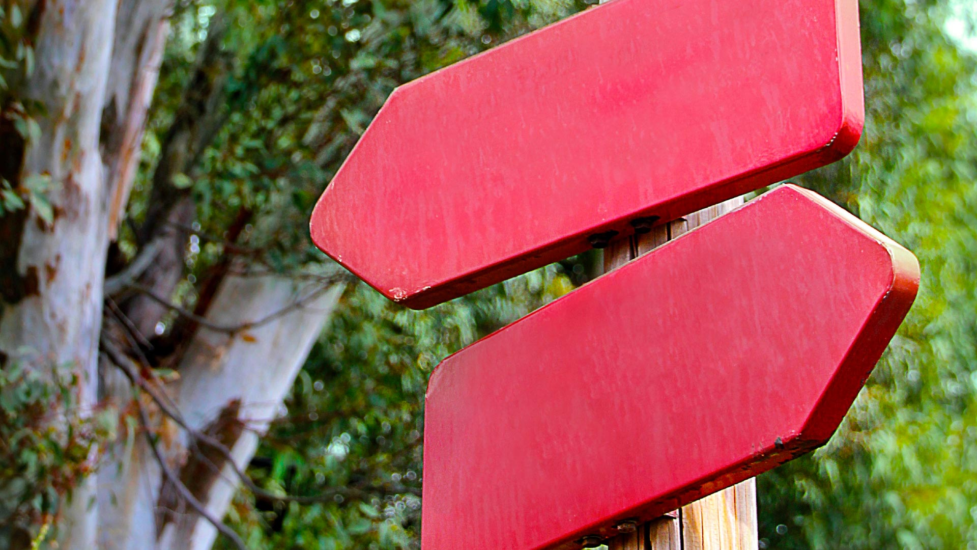 4 Ways Your Company Can Make Its Big Decisions Better