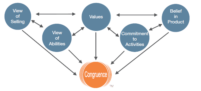 Integrity Solutions - Congruence Model